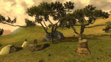 Twin trees in the Weather Hills (40.7W, 32.2S)